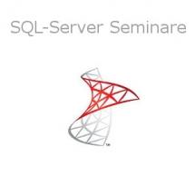 Kategoriebild SQL Server - hansesoft GmbH